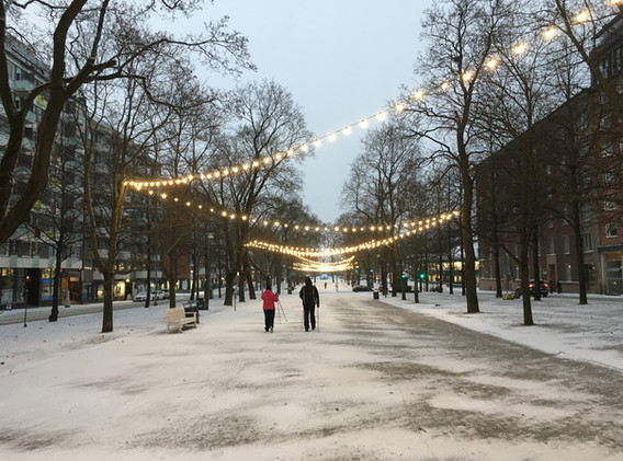 The Hameenpuisto (Main Boulevard)