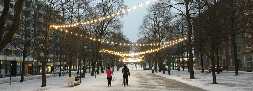 The Hameenpuisto (Main Boulevard)
