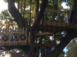 Tree House Final