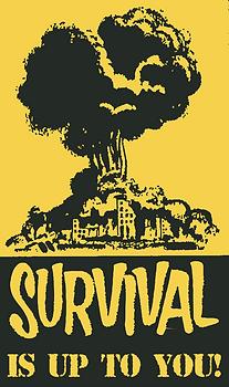 SurvivalPamphletCropped.png