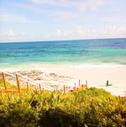 Stairs to Beach.JPG
