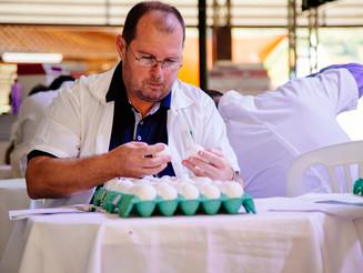Começa a avaliação dos ovos no II Concurso de Qualidade de Ovos da Coopeavi