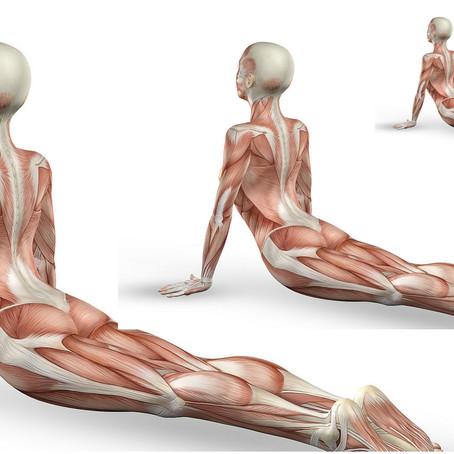 O Yoga é uma terapia?