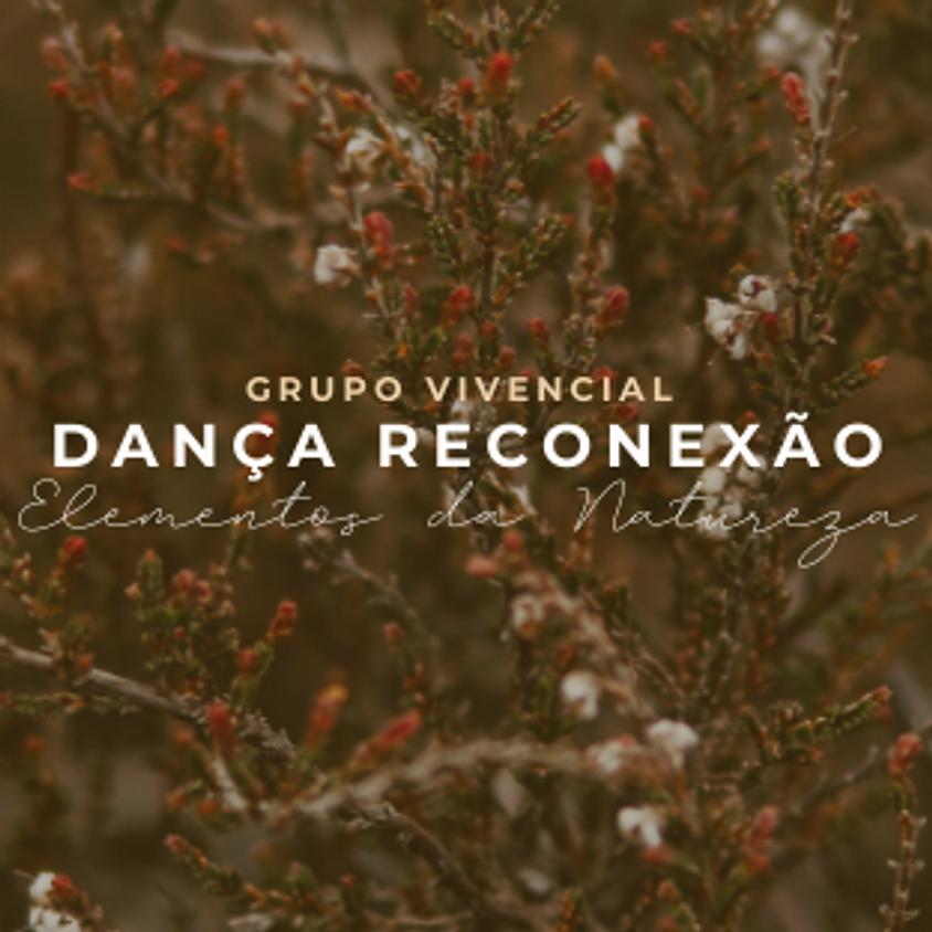 Grupo Vivencial Dança Reconexão - Elementos da Natureza