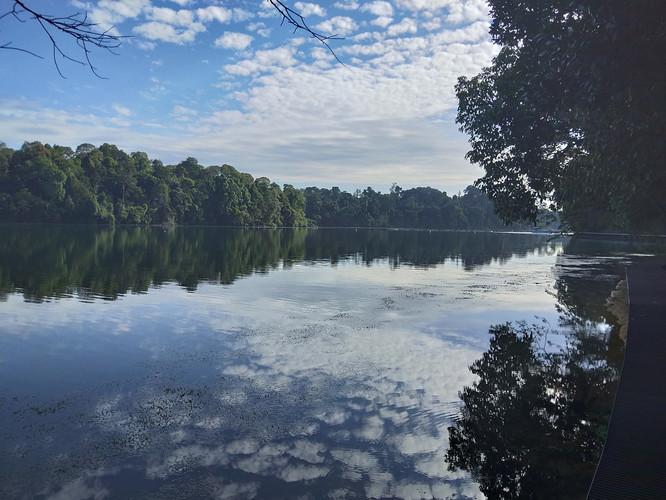 MacRitchie Reservoir.jpg