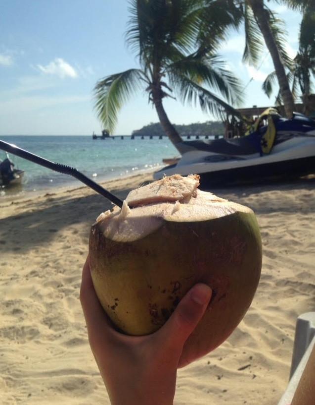 Travel blog - fresh coconut Fiji