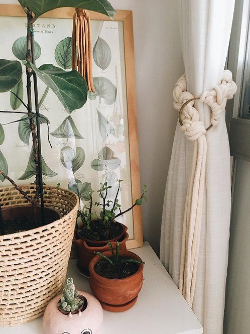 Mentha para cortina