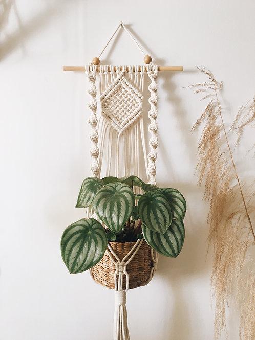 Hanger Cerejeira