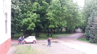 Park 8.jpg