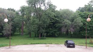 Park 1.jpg