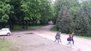 Park 7.jpg