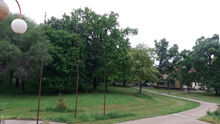 Park 3.jpg