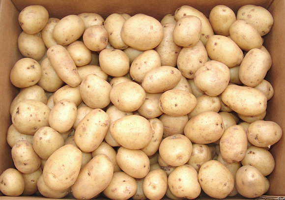 Potatoes Mids baby English 1kg