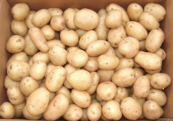 Potatoes Mids baby English 10kg box