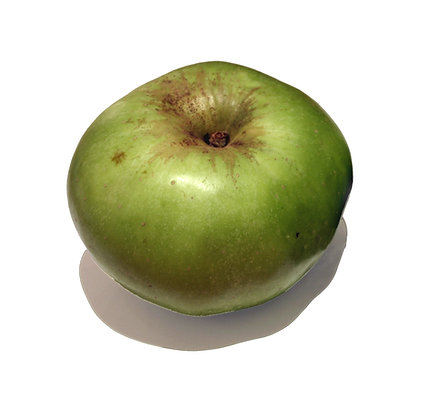 Apples Bramley Organic Barnstaple 1kg