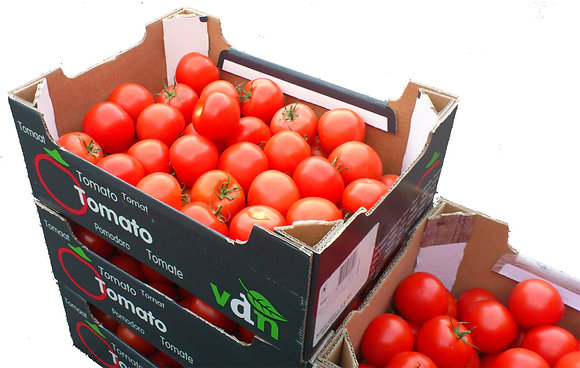 Tomatoes Dutch 6kg box