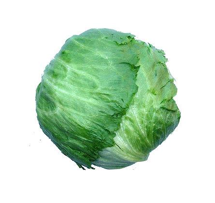 Lettuce Iceberg Spanish each