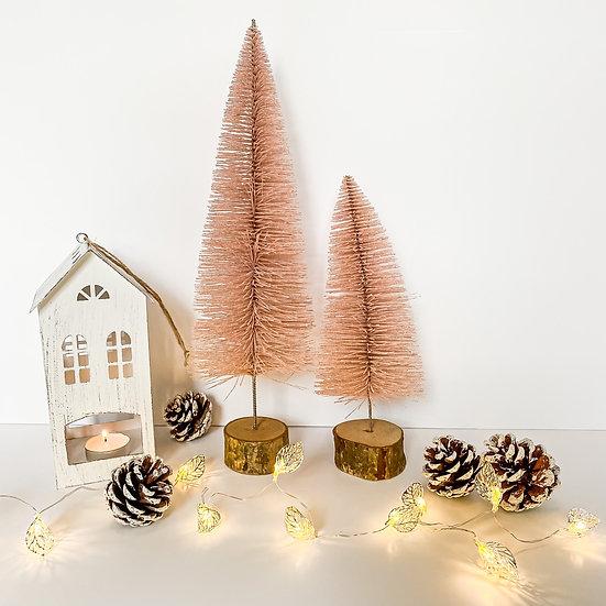 Pink Bristle Tree