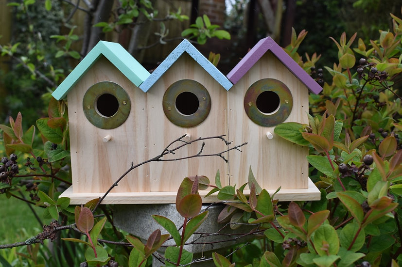 Triple Bird Box and Feeder