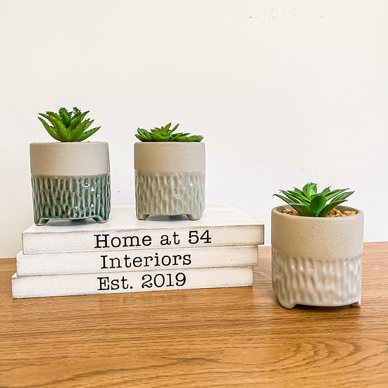 Set of 3 Footed Succulents