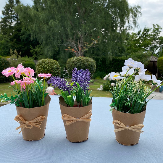 Set of 3 potted flowers