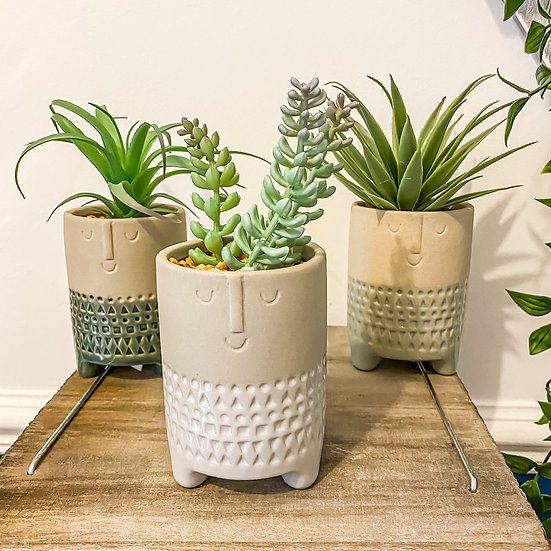 Set of 3 Stoneware Face Potted Succulent