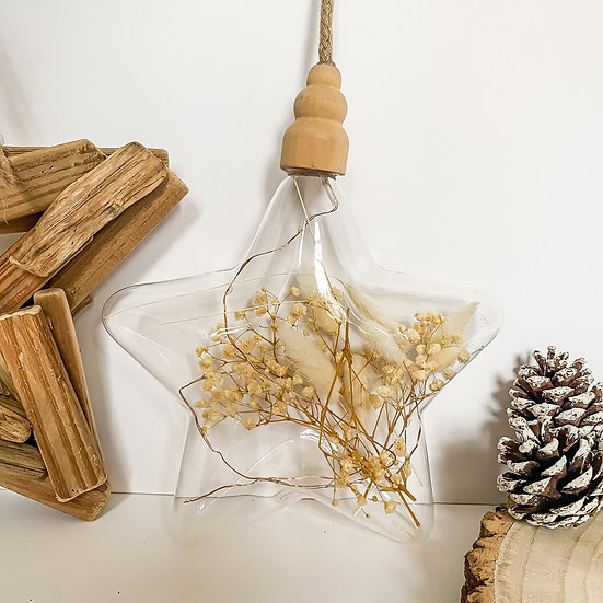 LED Glass Star filled with Dried Flowers