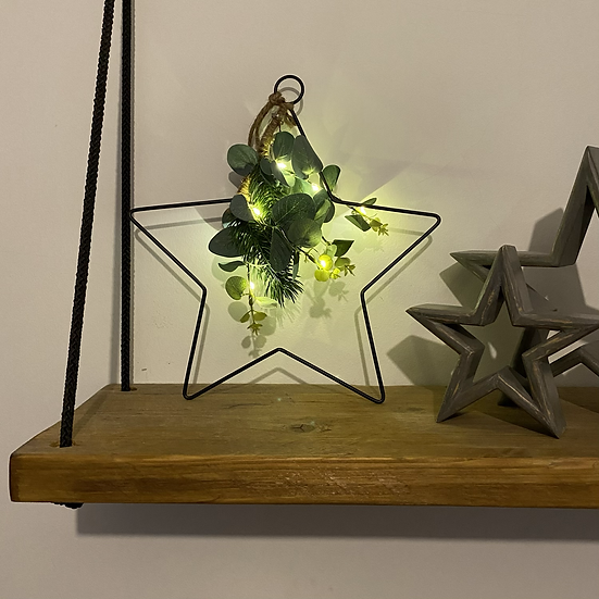 LED Star with Eucalyptus