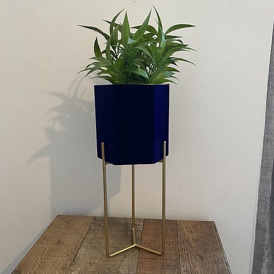 Blue Velvet Planter