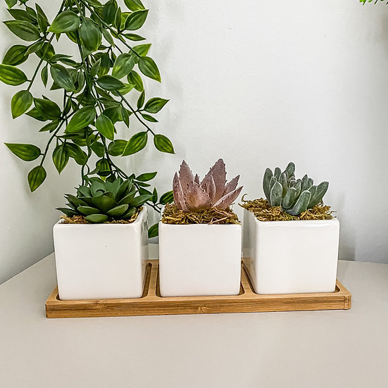 Bamboo Tray with Faux Succulents