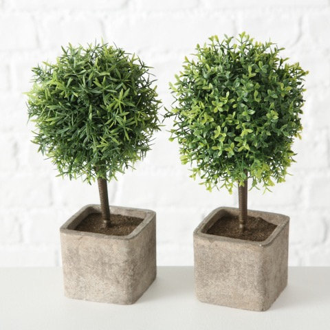 Small Potted Topiary