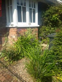 2 Orchard Cottage.jpg