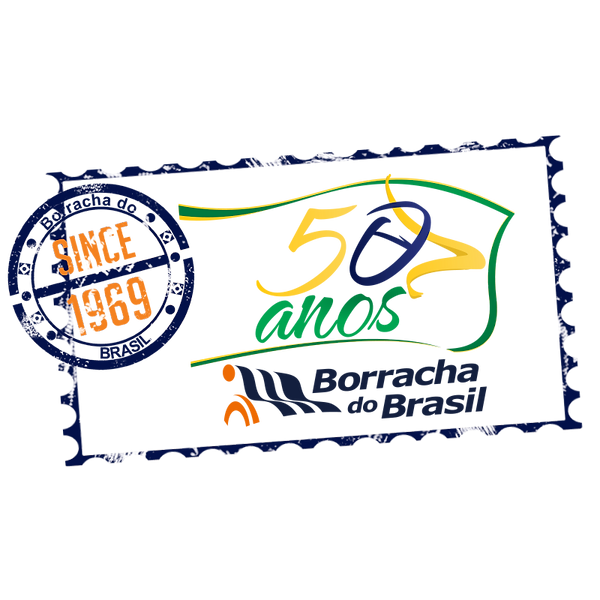 SELO 50 ANOS (800 x 800).png