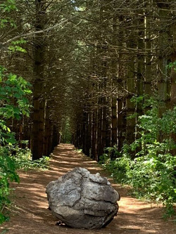 trail rock