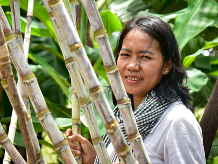 Building trust in local Cambodian products