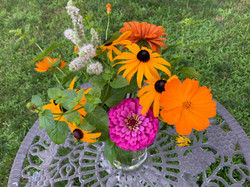 Happy annuals and mint