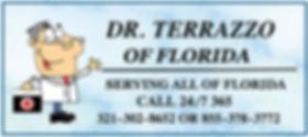 Dr Terrazzo Blue Marble Logo 5.jpg