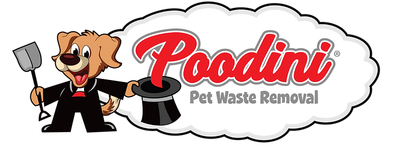Poodini removes dog poop in Gilbert