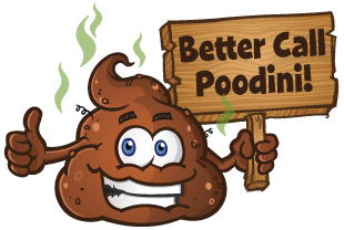 BetterCallPoodini.png
