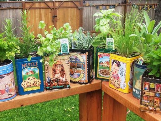 Un orto, o un giardino, per tutti!