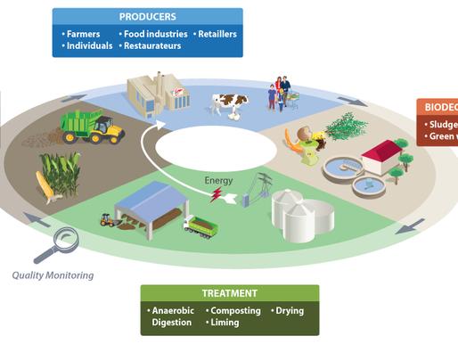 Economia circolare per un futuro sostenibile