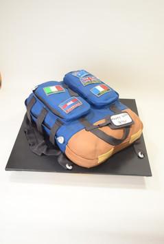 Travellers backpack