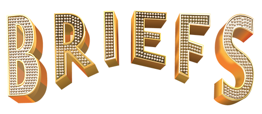 Briefs Logo Vector jpg (1).png