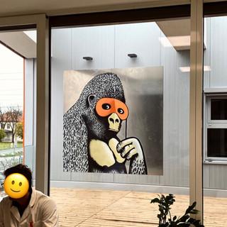 Banksy Gorilla Diagnostik