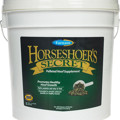 Farnam Horseshoer's Secret