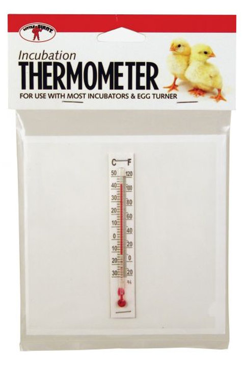 Little Giant Incubation Thermometer