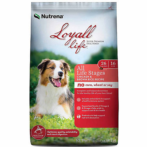 Loyall All Life Stages