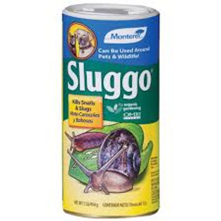 Monterey Sluggo