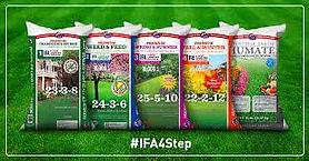 ifa 4 step pack.jfif