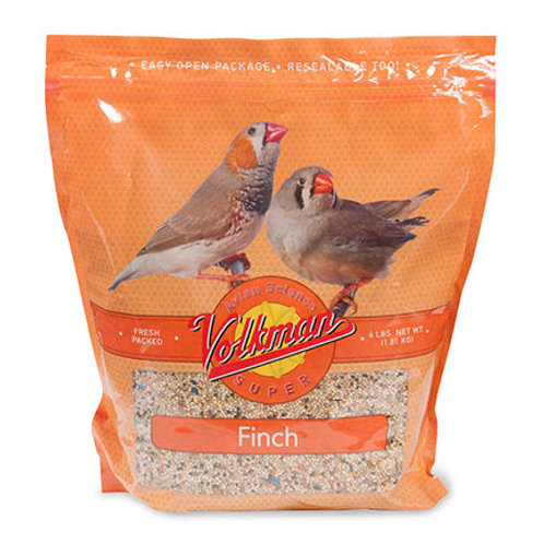 Volkman Finch